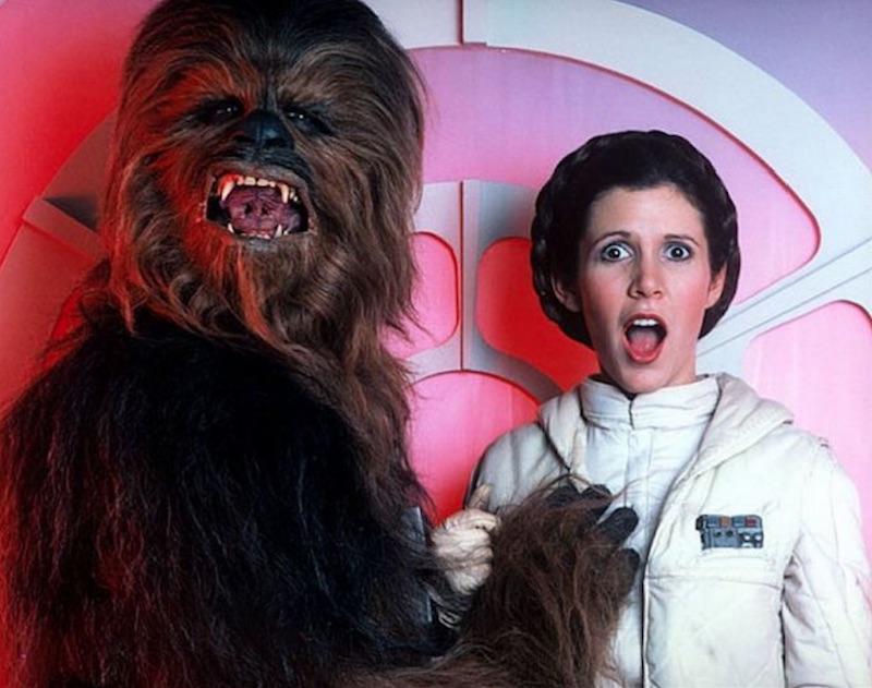 Princess Leia :